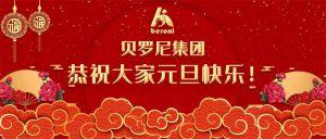 贝罗尼集团恭祝大家元旦快乐!